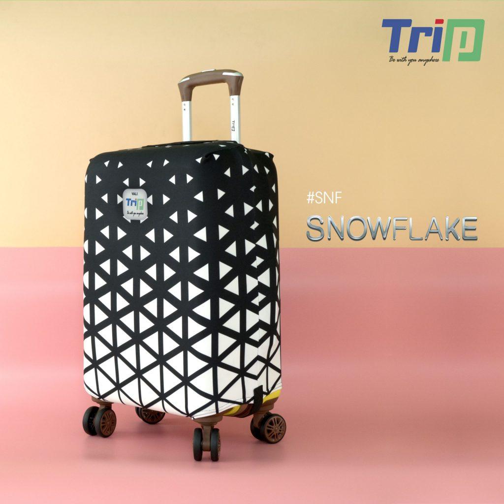 12 SNOWFLAKE HA 1 scaled 1